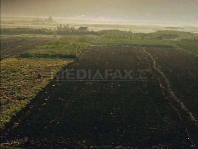 agricultura-teren-vlad-dumitrescu