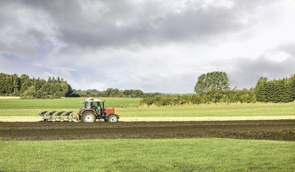 14-agricultura-shutterstock-152066246-465×215
