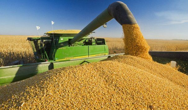 agricultura-productie-605×356