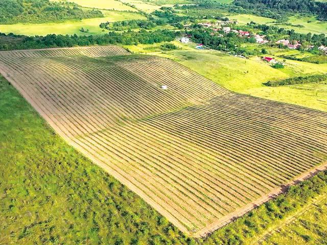 7-teren-agricol