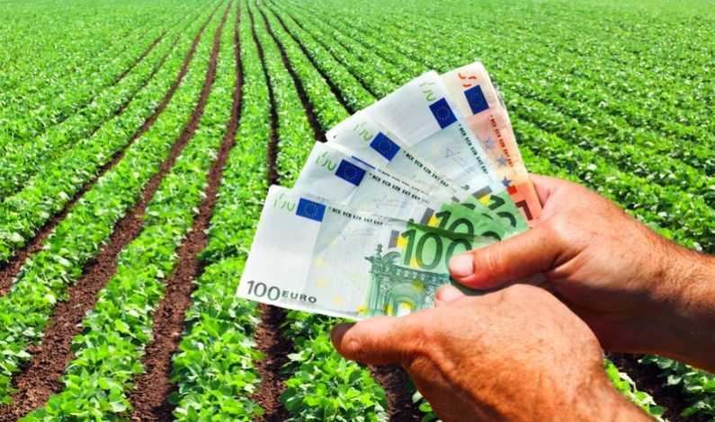 Fonduri europene 2020 tineri fermieri_0